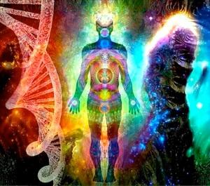 DNA-15041