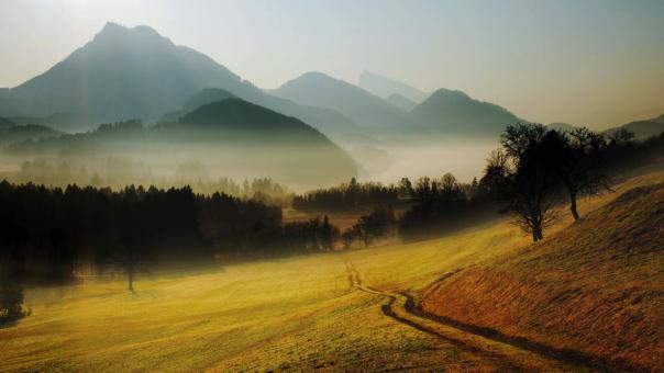 misty-morning-inthe-valley-242689