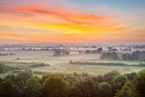 Somerset-Levels_MG_9476