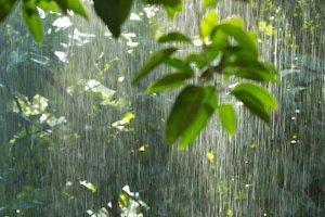 downpour-rain