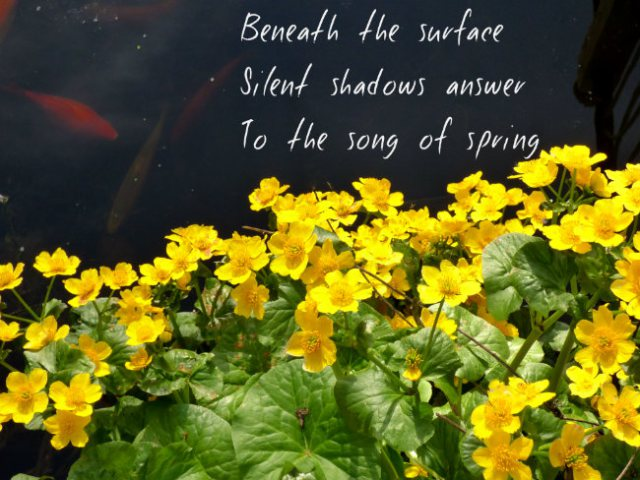 Beneath the surfaceSilent shadows answerTo the song of spring