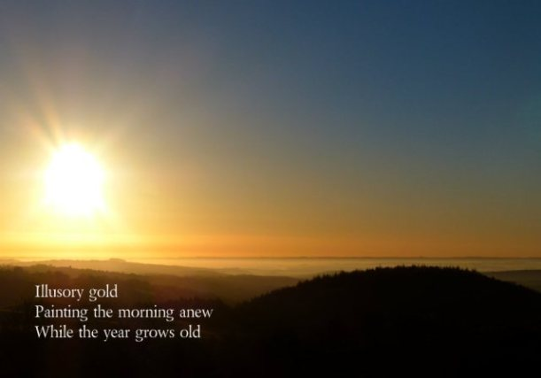 Illusory gold Painting the morning anew While the year grows old