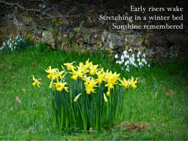 Early risers wake Stretching in a winter bed Sunshine remembered