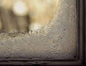 frost_window
