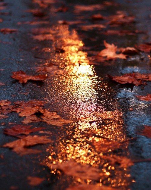 autumn:57c91ae50b98a12464d3386d0a51fbe7